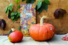 Pumpkins. Colorful autumn decoration with pumpkins Stock Photo