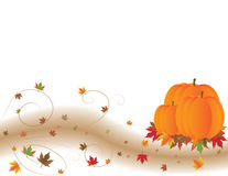 Pumpkins and Colorful Autumn Leaves Royalty Free Stock Photography