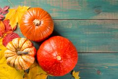 Pumpkins on colorful leaves on green wooden background. Top view. Autumn and Halloween image. royalty free stock photos