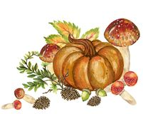 Pumpkins and colorful leaves Watercolor gouache Autumn Fall Hand royalty free stock photos
