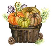 Pumpkins and colorful leaves Watercolor gouache Autumn Fall Hand royalty free stock images