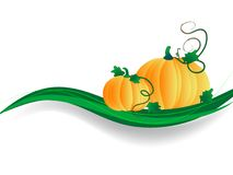 Pumpkins concept Royalty Free Stock Photography