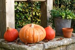 Pumpkins on the coping of a well. In a garden during autumn Royalty Free Stock Images