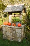 Pumpkins on the coping of a well. After harvest during autumn Stock Image