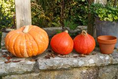 Pumpkins on the coping of a well Royalty Free Stock Photos