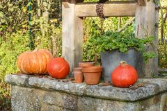 Pumpkins on the coping of a well. After harvest during autumn Stock Images