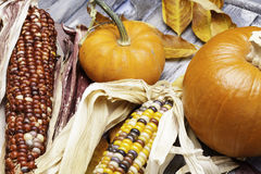Pumpkins and Corn Stock Photos