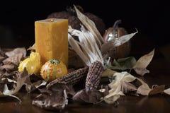 Pumpkins and Corn for Thanksgiving Decor stock photos