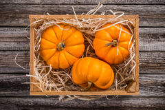 Pumpkins in crate Royalty Free Stock Photo