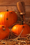 Pumpkins Crawling With Spiders Royalty Free Stock Images