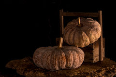 Pumpkins with dark background Royalty Free Stock Photo