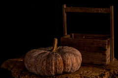 Pumpkins with dark background Royalty Free Stock Photos
