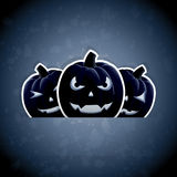 Pumpkins on dark blue background Stock Photo