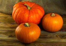 Pumpkins on dark wooden background Stock Photography