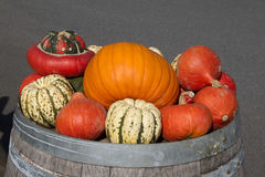 Pumpkins. Different pumpkins on an old barrel Royalty Free Stock Photography