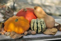 Pumpkins Stock Photo