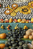 Pumpkins display Stock Image