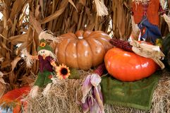 Pumpkins Dolls and Thanksgiving. A pumpkins and straw doll in a Thanksgiving setting in the horizontal view Stock Photos