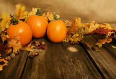 Pumpkins Fall Leaves. Three small pie pumpkins with fall leaves on rustic wood boards and blurred burlap background Royalty Free Stock Image