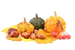 Pumpkins and fall leaves. Stock Photo