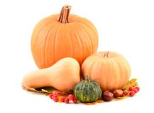 Pumpkins and fall leaves. Royalty Free Stock Photo
