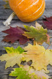 Pumpkins and fall leaves Stock Photo