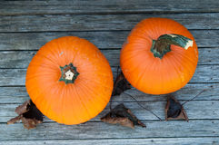 Pumpkins and fall leaves Royalty Free Stock Photos