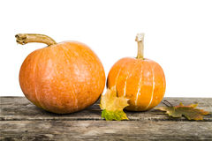 Pumpkins and fall leaves Royalty Free Stock Image