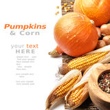 Pumpkins and fall vegetables Royalty Free Stock Images