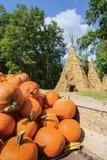 Pumpkins at Farm Market Stock Image