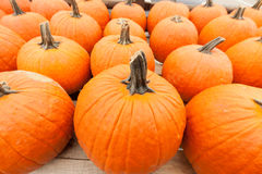 Pumpkins at the farmer market. Royalty Free Stock Images