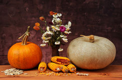 Pumpkins and flowers in a ceramic vase Stock Photography