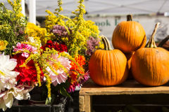 Pumpkins and flowers. Flower arrangement with pumpkins at a farmer's market Royalty Free Stock Photography