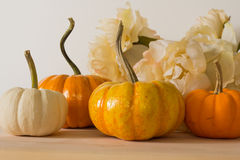 Pumpkins and flowers Royalty Free Stock Images