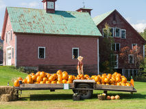 Pumpkins For Sale At A Farm Stand Royalty Free Stock Photos