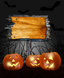 Pumpkins in forest, Space for  Halloween holiday text. Stock Image