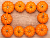 Pumpkins Frame over Burlap and Wooden Background. Harvest Stock Photos