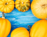 Pumpkins frame on wooden sea blue background, flat lay. Halloween and thanksgiving concept. Pumpkins create a frame on wooden blue background, copy space for royalty free stock images