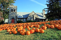 Pumpkins in Front of Church. Several bright orange pumpkins bathing in the morning sun on the grass in front of church Stock Photos