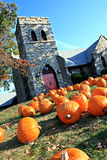Pumpkins on Front of Church. Several bright orange pumpkins bathing in the morning sun on the grass in front of church Stock Photos