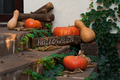 Pumpkins in front door to celebrate. Halloween. Stock Photos