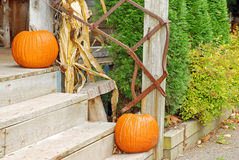 Pumpkins on the front steps Stock Photos