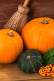 Pumpkins & Gourd Stock Photo