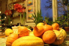 Pumpkins, gourds, colorful vegetables Stock Photography