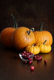 Pumpkins, gourds and cranberries on table Stock Image
