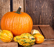 Pumpkins and gourds on a crate Stock Photo