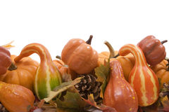 Pumpkins and gourds with fall. Pumpkins and gourds on isolated on white background with fall leaves Stock Photo