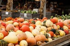 Pumpkins Gourds Farmers Market Stock Photos
