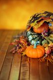 Pumpkins, gourds, and leaves in an Autumn cornucopia. Background Stock Images
