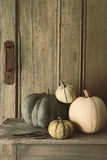 Pumpkins and gourds on old bench Stock Image